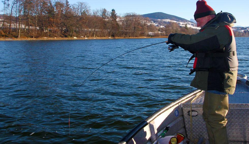 fische brauchen sauerstoff